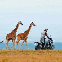 voyage-moto-afrique-du-sud-cap-trail-off-road-monsieur-pingouin