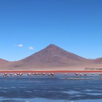 voyage-moto-monsieurpingouin-argentine-bolivie-chili-23