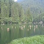 Voyage-moto-Roumanie-lac-rouge