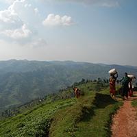 Voyage à moto au Rwanda avec Monsieur Pingouin Collines