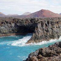 BOXER-PASSION-Canaries-Lanzarote