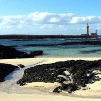 BOXER-PASSION-Canaries-fuerteventura